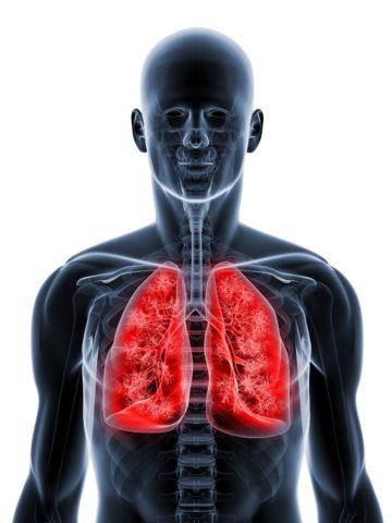 Как восстановить здоровье дыхательной системы.
