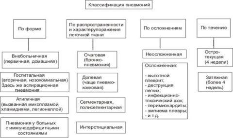 Схема 1. Виды пневмонии