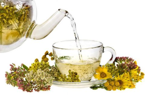 Травяные чаи – польза для организма