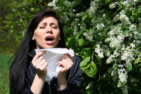 Аллергическую одышку можно предотвратить, избегая контакта с возбудителем