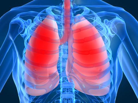 Факторы, предрасполагающие к развитию недуга.