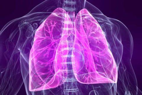 Главные причины скопления жидкости в легких человека.