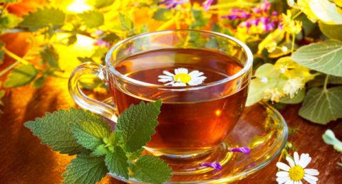 Обильное питье из трав и ягод помогает вывести вредные вещества