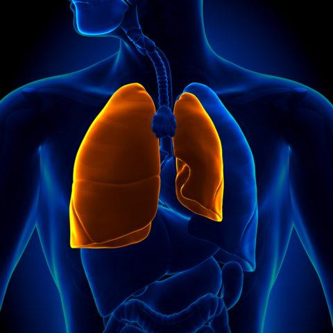 Пневмоторакс – весомый повод для обращения за медицинской помощью.