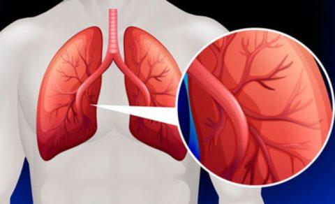 Поможет ли УЗИ сердца выявить нарушение.