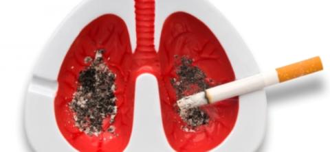 Табачный дым убивает человеческие легкие.