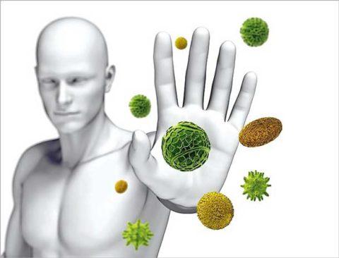 Сильный иммунитет – основа здоровья