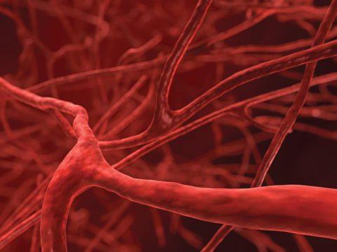 Распространение с током крови.