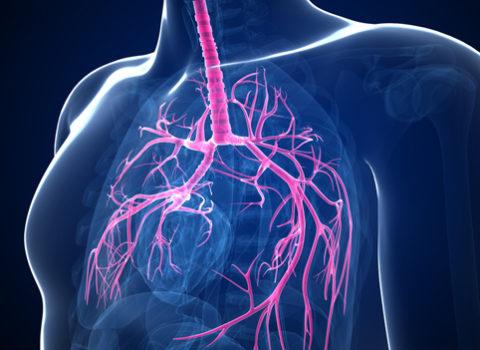 На какие параметры обращают внимание при определении диагноза.