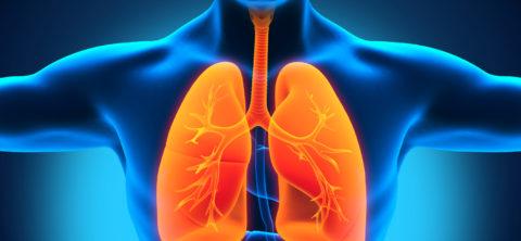 Какова средняя продолжительность ИП при туберкулезе.