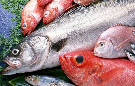 Морепродукты и морская рыба