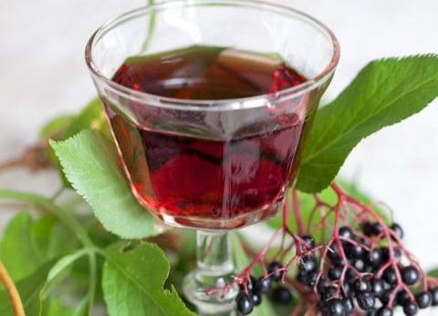 Чай из черной бузины выведет токсины и улучшит состояние ребенка в целом.