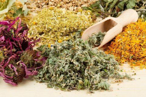 Всевозможные лекарственные травы, в том числе, изображенные на фото – кладезь полезных веществ и важных микроэлементов.
