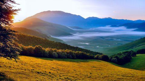 Ежегодное посещение горных районов как мера профилактики хронического бронхита.