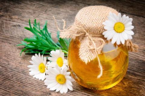 Избавиться от мучительного кашля и облегчить дыхание при туберкулезе поможет сочетание ромашки, меда и сосновой пыльцы.