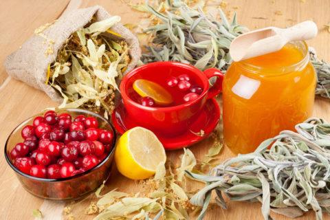 Лечебные чаи при бронхите с липой, клюквой, медом и лимоном