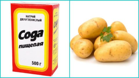 На фото сода и отварной картофель – чудодейственное средство от кашля.