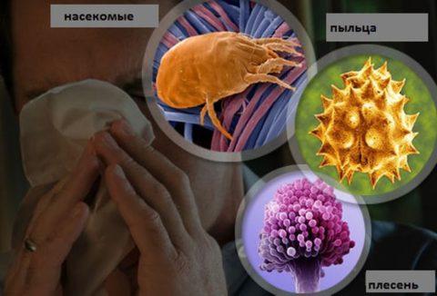 Неинфекционные факторы, вызывающие развитие астматического бронхита – это различные аллергены
