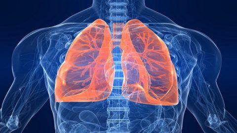 Последовательная смена патологических изменений позволяет говорить о стадиях болезни