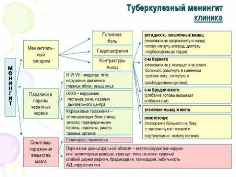 Схема 1. Симптомы туберкулеза ЦНС