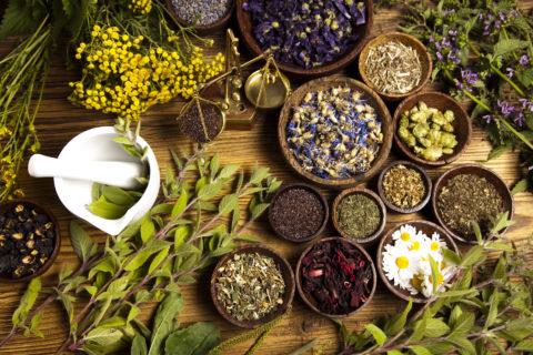 Сила природы, заключенная в разнообразии лекарственных трав, поможет побороть бронхит и укрепить здоровье.