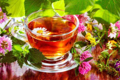 Травяной отвар успокоит кашель, улучшить самочувствие и насытить организм полезными веществами.