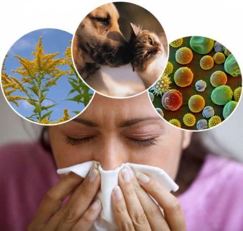 Аллергическая предрасположенность может стать причиной бронхита.