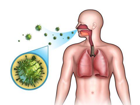 Больные выделяют бактерии в воздух при кашле