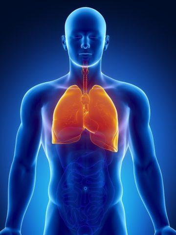 Как сохранить здоровье легких.
