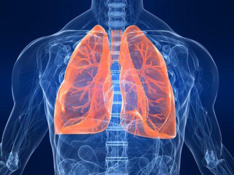 Как сохранить здоровье легких?