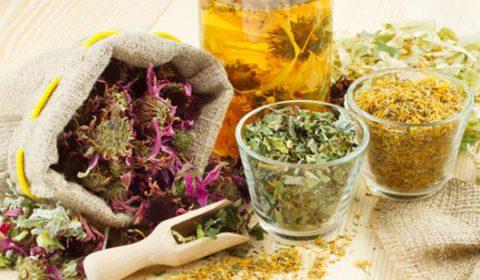 Травы при лечении можно заваривать, как отдельно, так и в сочетании друг с другом.