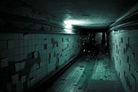 В темных сырых помещениях палочка Коха чувствует себя вольготно