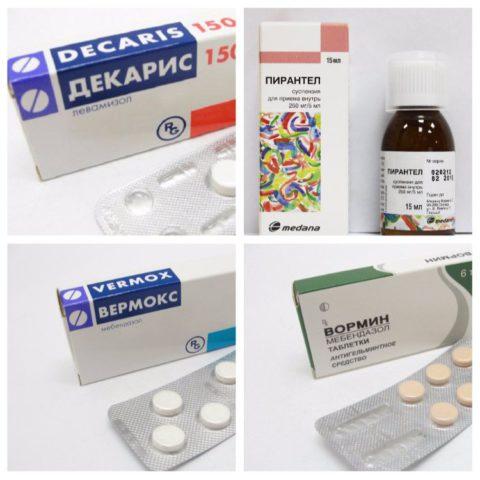 Эффективные противогельминтные средства