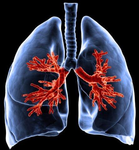 Если кашель не проходит стоит сделать рентген грудной клетки