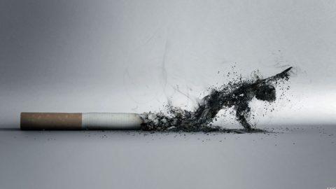 Курение убивает легкие и иммунитет.