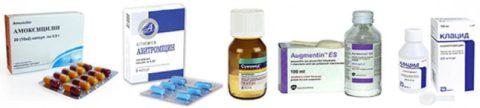 Медикаменты для лечения бронхита разнообразны