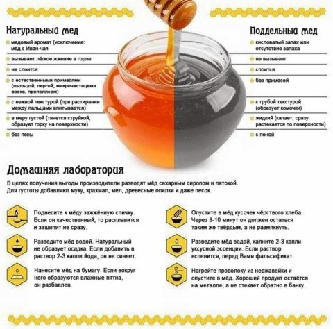 Рекомендации для определения натуральности пчелиного меда