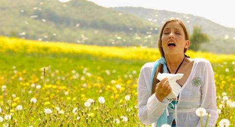 Воздействие аллергенов на организм приводит к развитию хронического воспалительного процесса.