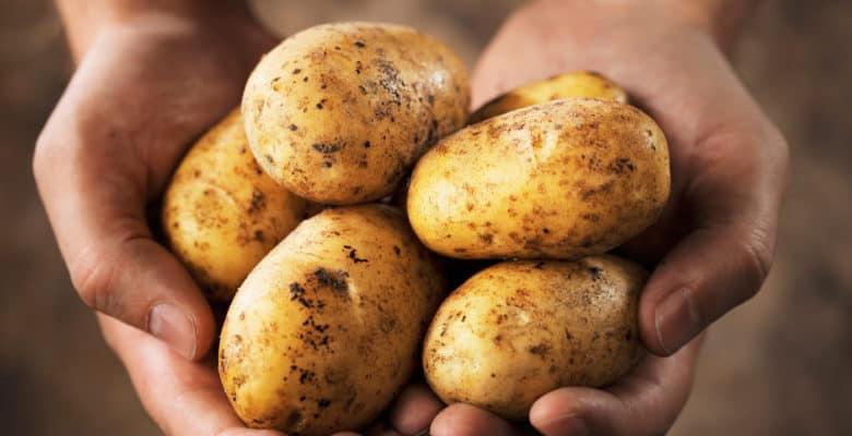 картофель от аллергии на лице